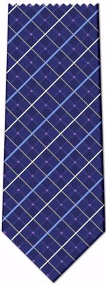 Picture of 100% SILK WOVEN - BLUE PLAID