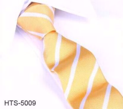 Picture of SILK WOVEN MULTI-COLOR WHITE STRIPE TIE - 5 TO CHOOSE FROM
